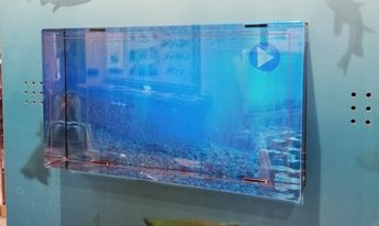 lokkingglass2